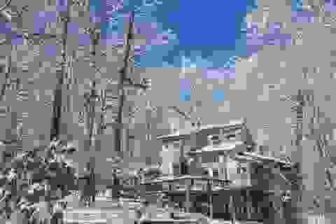 Ngôi nhà đẹp mê hồn giữa tuyết trắng của nữ nhà văn Việt