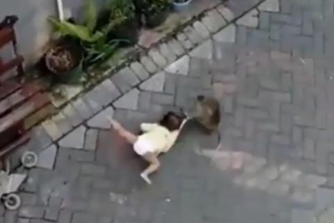 """Clip khỉ đi xe đạp """"bắt"""" trẻ con, kéo lê bé trên đường"""