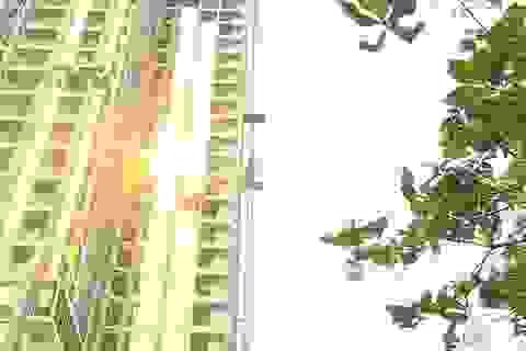"""Đà Nẵng: Tuýt còi 2 cao ốc lén đổi thiết kế, """"dát vàng"""" mặt ngoài tòa nhà"""