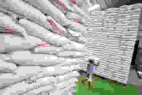 Vụ mua gạo dự trữ: Yêu cầu chuyển hồ sơ sai phạm sang Bộ Công an