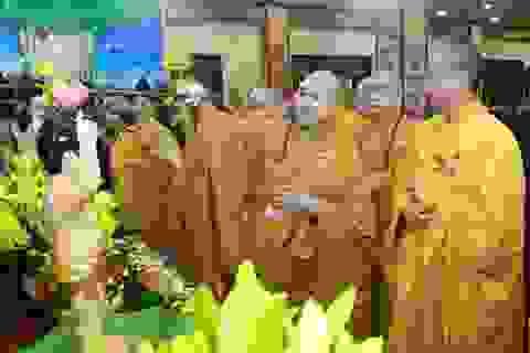 Lễ Phật đản đặc biệt ở chùa Quán Sứ - Hà Nội