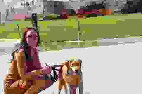 Du lịch giá rẻ vòng quanh thế giới nhờ dịch vụ chăm sóc thú cưng