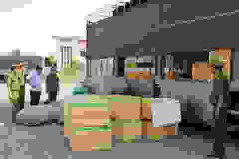 Quảng Bình bắt giữ một xe tải chở hơn 7 tạ thịt chó, mèo bốc mùi hôi thối