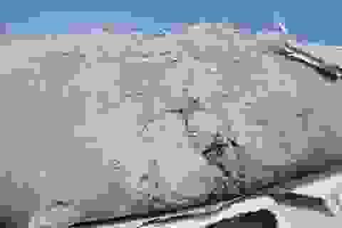 Nhà thầu dừng thi công, hàng chục tấn xi măng đông cứng giữa đồng