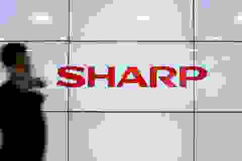 Sharp: Từ tượng đài công nghệ đến kẻ núp bóng thương hiệu Nhật Bản