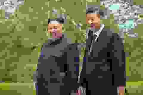 Trung Quốc đề nghị giúp Triều Tiên chống dịch Covid-19