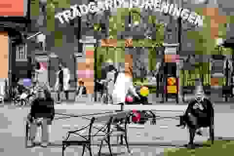 Thụy Điển sửa chiến lược chống dịch khác biệt vì nhiều người già qua đời