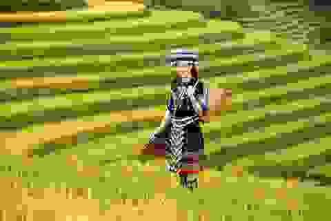 Hoa hậu Khánh Ngân đẹp cuốn hút trong bộ ảnh quảng bá du lịch Việt Nam