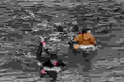 Thoát khỏi tử thần nhờ can đảm đấm cá mập