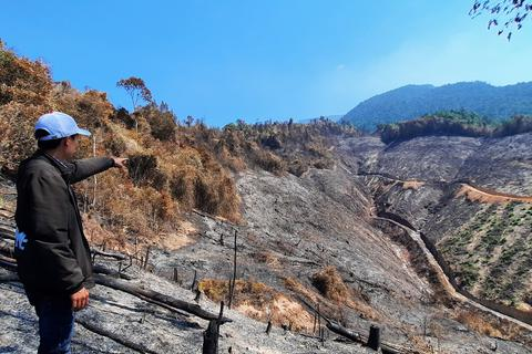 Vụ cháy hơn 32 ha rừng phòng hộ: Đề nghị khởi tố vụ án