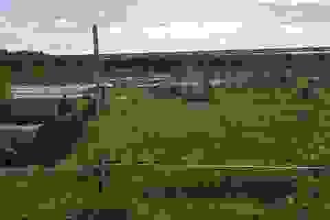 Đề nghị định giá 255 thửa đất do Công ty địa ốc Alibaba đứng tên