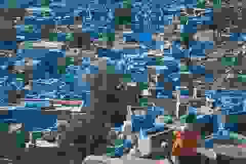 Bộ ảnh tuyệt đẹp về thành phố xanh của chàng trai Việt