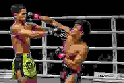 Tung ra cú đấm uy lực, Nguyễn Trần Duy Nhất khiến đối thủ... ngất xỉu