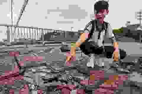 Hà Nội : Mặt cầu Tứ Hiệp sụt lún bất thường, người dân đi bộ cũng e dè