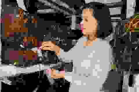 Định hướng nghề cho thanh niên dân tộc thiểu số tại Thừa Thiên Huế
