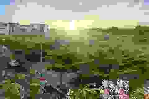 Xu hướng khu dân cư xanh thu hút nhà đầu tư