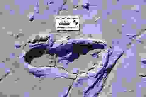 Phát hiện hàng trăm dấu chân hóa thạch cực hiếm của người cổ đại ở châu Phi