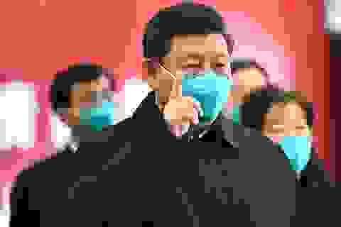 Ông Tập Cận Bình nói Trung Quốc ủng hộ điều tra Covid-19