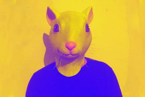 Các nhà khoa học tạo ra vật lai giữa chuột và người