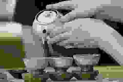 Các loại trà ngăn ngừa những vấn đề về tiêu hóa trong thời gian chống dịch