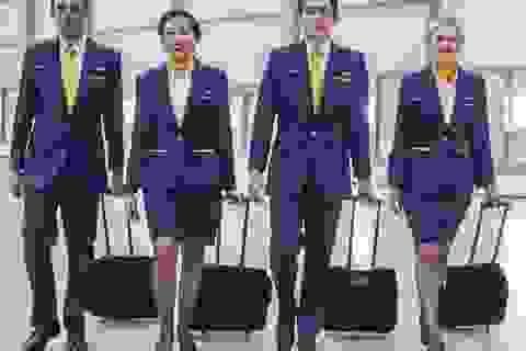 Hành khách phải xin phép mới được dùng nhà vệ sinh trên máy bay