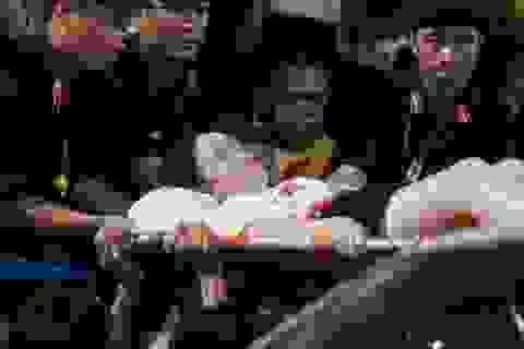 4 năm tù cho người bắn pháo sáng trên sân Hàng Đẫy khiến nữ CĐV bị thương