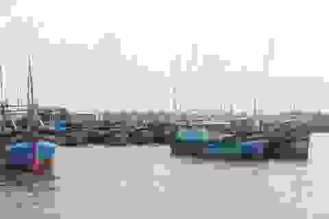 Mở chuyên án điều tra hành vi trục lợi tiền hỗ trợ nhiên liệu tàu cá