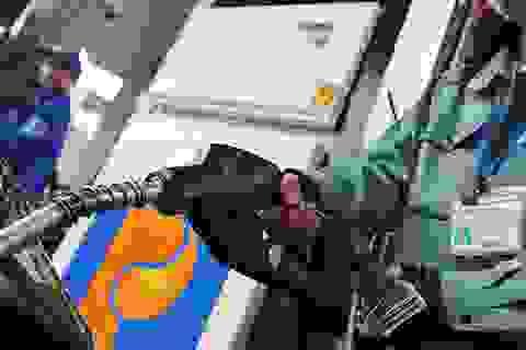 """Thủ tướng """"siết"""" quản lý xăng dầu dự trữ quốc gia"""