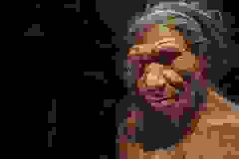 Siêu máy tính tìm ra nguyên nhân tuyệt chủng của người Neanderthal