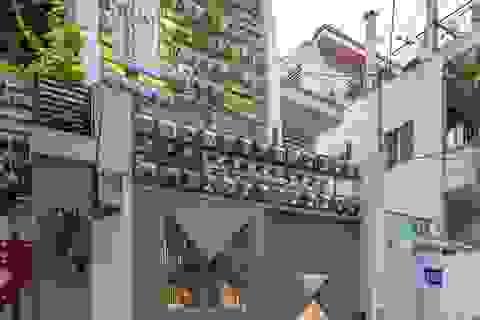 Mãn nhãn ngôi nhà với mặt tiền uốn cong như ốc đảo xanh ở Sài Gòn