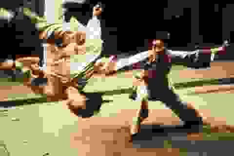 Những phim Châu Á góp mặt trong 100 phim xuất sắc nhất thế kỷ 21