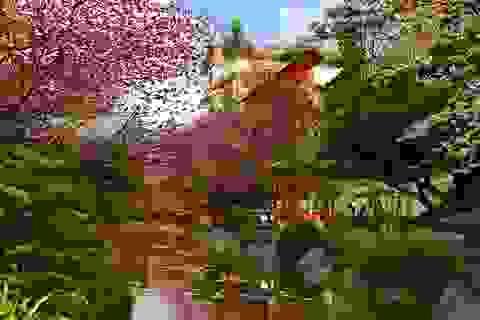 Sắp có công viên khoáng nóng 4,4 ha gần Hà Nội