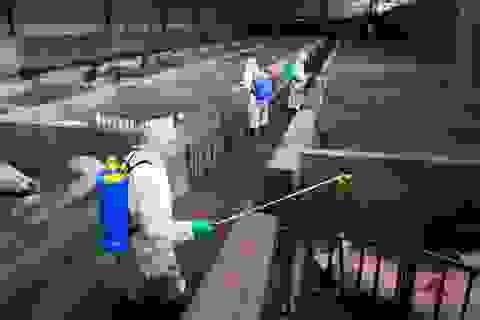 Trung Quốc bắt giữ băng đảng bán vắc-xin dịch tả lợn châu Phi giả