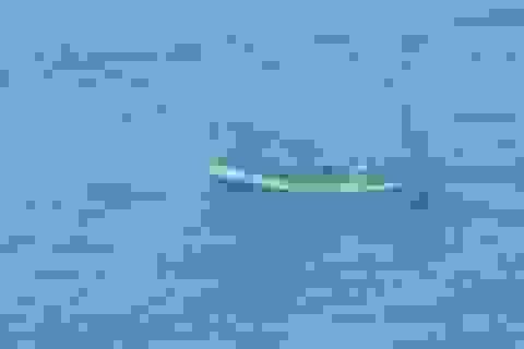 Tìm thấy thi thể thuyền trưởng bị ngư phủ tấn công rớt xuống biển