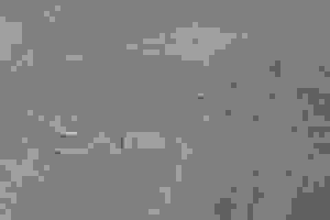 Giải mã bí ẩn hình vẽ trên cao nguyên Nazca ở Peru
