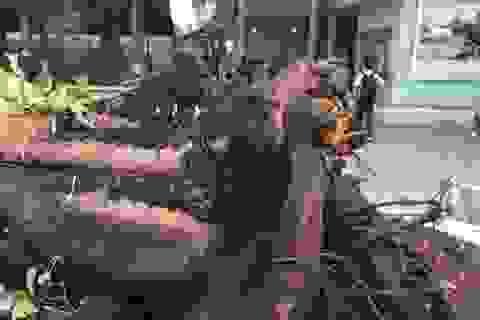 Vụ cây phượng bật gốc trong sân trường: 1 học sinh đã tử vong