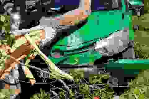 Tránh Camry, taxi leo dải phân cách tông đổ cây xanh