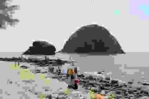 Phú Yên: Thành lập tổ bảo vệ để bảo tồn rạn san hô Hòn Yến