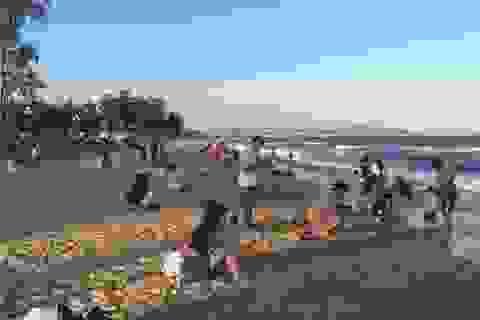 Đội phó kiểm lâm tử nạn khi đi tắm biển tại Bình Thuận
