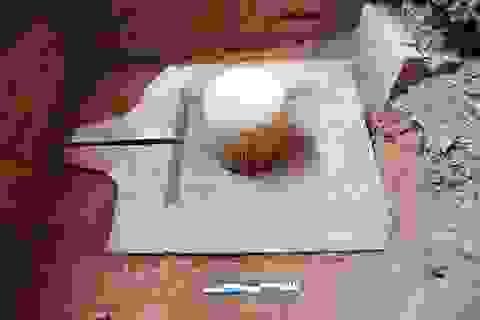 Phát hiện Linga-Yoni liền khối thế kỷ IX lớn nhất Việt Nam ở Mỹ Sơn