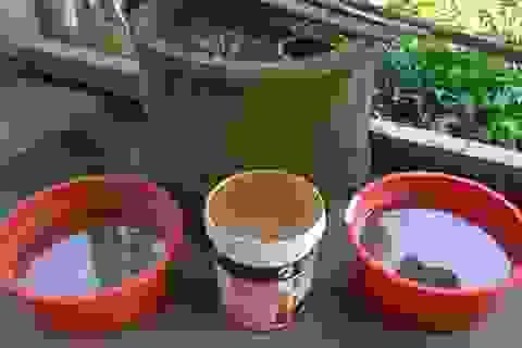 """Dự án cấp nước """"treo"""" 8 năm, dân mỏi mòn dùng nước bẩn!"""