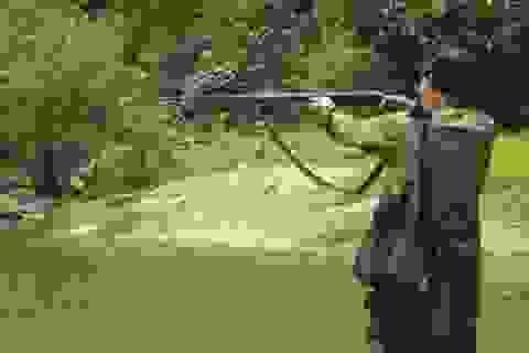 Bố bắn con trai tử vong vì tưởng con là thú rừng