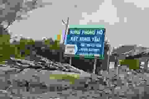 Xử lý tập thể, cá nhân để rừng bị chặt trái phép tại VQG Mũi Cà mau