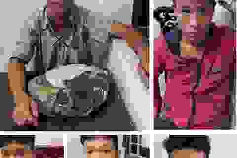 Triệt phá ổ nhóm trộm chó trên địa bàn Nghệ An