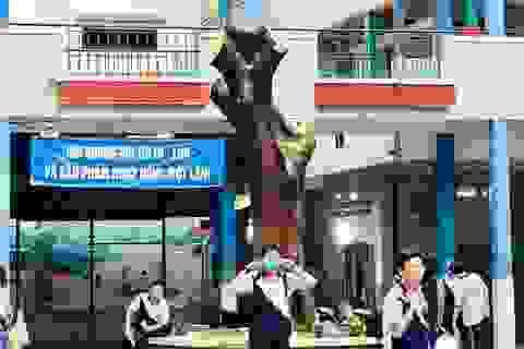 Sau vụ cây phượng bật gốc, Trường THCS Bạch Đằng cắt bỏ nhiều cây xanh