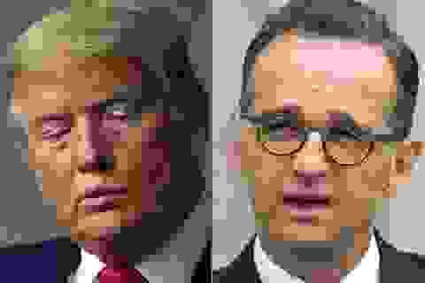 """Đức nhắn Mỹ chuyện cắt quan hệ với WHO: """"Không thể phá đê giữa lúc gặp bão"""""""