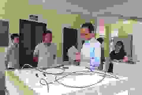 Đề xuất cơ chế đặc biệt cho chuyên gia Nhật sang kiểm tra quả vải Việt Nam