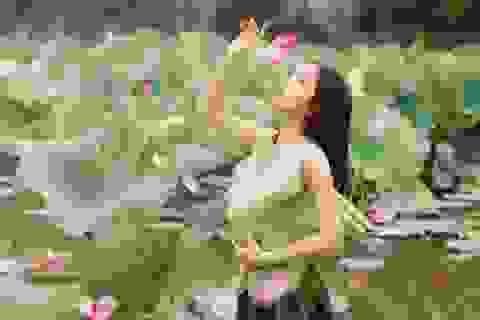 Thiếu nữ xứ Nghệ đọ sắc bên đầm sen