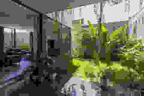 Ngỡ ngàng biệt thự ở Ninh Bình giấu cả khu vườn xanh mát bên trong