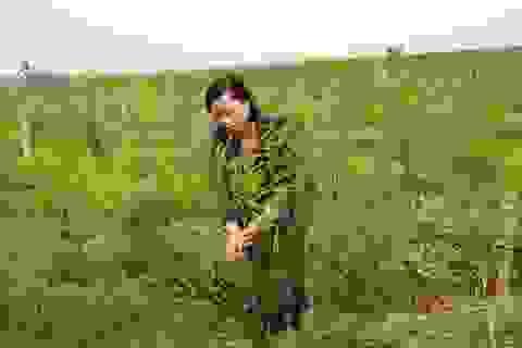 """Trồng cây """"rau vua"""", nuôi con đặc sản, nông dân nhanh giàu"""